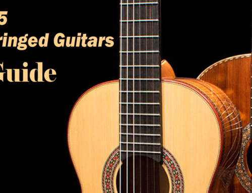 Top 5 Nylon-String & Classical Guitars for Beginners – 2020 Guide
