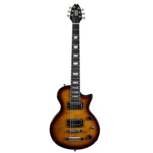 Shredneck Travel Electric Guitar