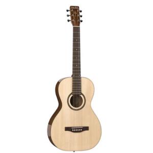 Woodland Pro Acoustic Parlor Guitar