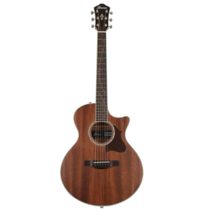Ibanez AE245JR Acoustic Guitar Under $500