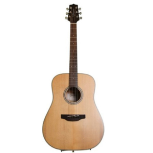 Takamine GD20-NS Acoustic Guitar Under $500
