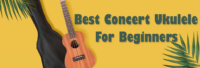 Best Concert Ukulele for Beginners and Experts - 2020